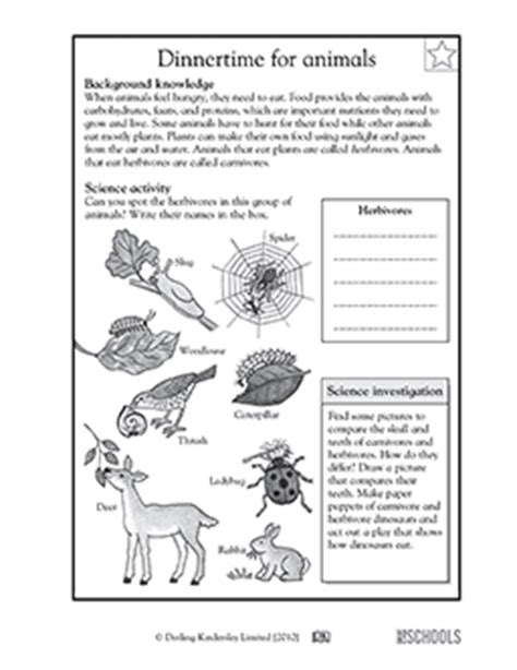 Science Worksheets 4th Grade by 3rd Grade 4th Grade Science Worksheets Animal Dinnertime