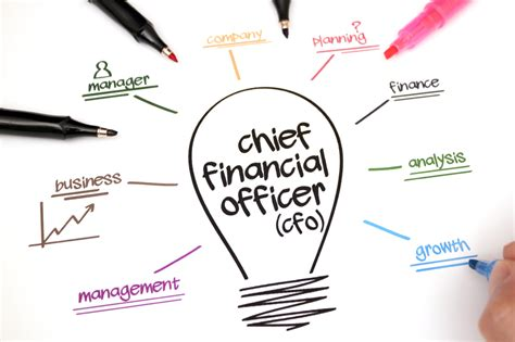 Chief Financial Officer by The Chief Financial Officer Perspective Pearson Partners
