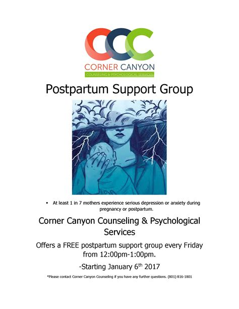Rallies For Postpartum Sufferers by 187 Postpartum Support Flyer