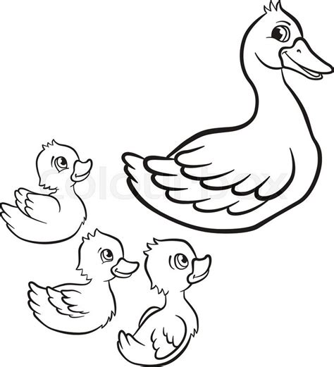duck swimming coloring page drawn duckling little duck pencil and in color drawn
