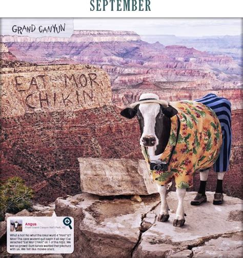Fil A Cow Calendar 17 Best Images About Fil A Cows On