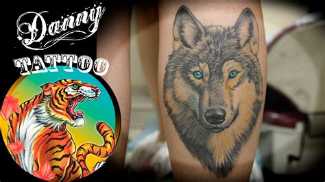 lobo colorido panturrilha danny tattoo colorful wolf