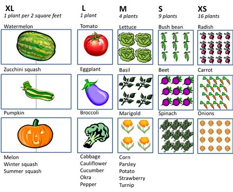 Vegetable Garden Layout Plans And Spacing Square Foot Gardening