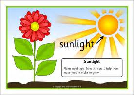 plants that need sunlight free quot plants need quot posters colorful posters illustrate a