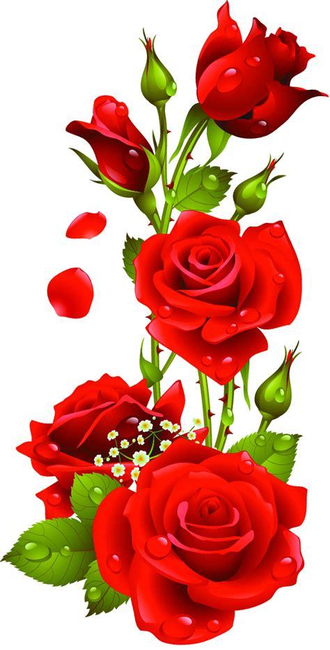 rose vector png   clip art  clip