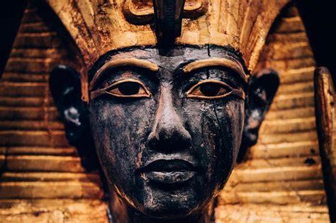 largest collection  king tutankhamuns treasures