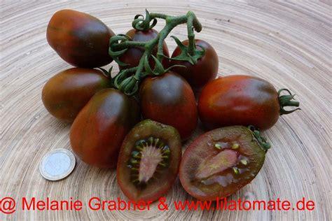 Tomot Black Plum saatgut tomate black plum klein arbeitstitel saatgut