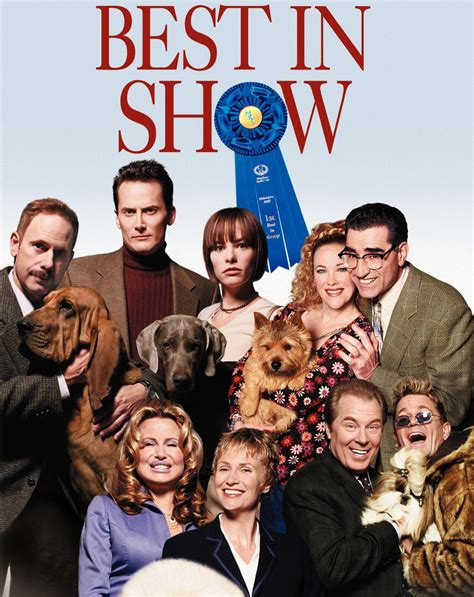 best shows of 2013 best in show dvd cover 21 the alphabetical