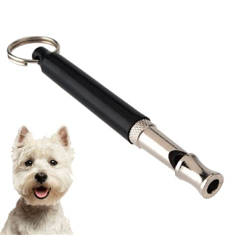 puppy whistle best whistles and where to buy them jug