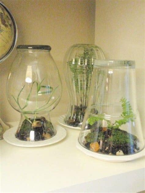 diy terrarium simple diy home terrarium shelterness diy crafts
