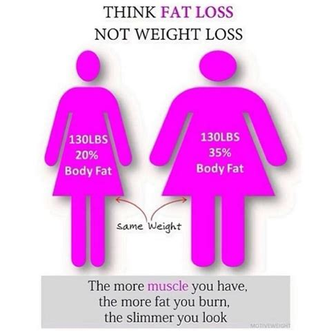 Fatty Stool Weight Loss by Loss Vs Weight Loss Infinite Fitness