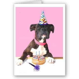 Birthday Cards With Dogs Happy Birthday Boxer Dog Greeting Card Happy Birthday