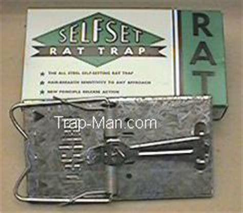 new year metal rat self set rat trap