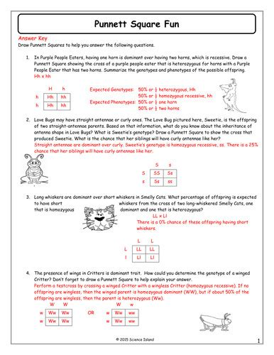punnett square review worksheet genetics practice problems worksheet homeschooldressage