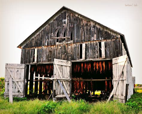 commonplace beauty photography a tobacco barn