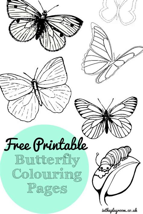 printable images butterflies free printable butterfly colouring pages in the playroom