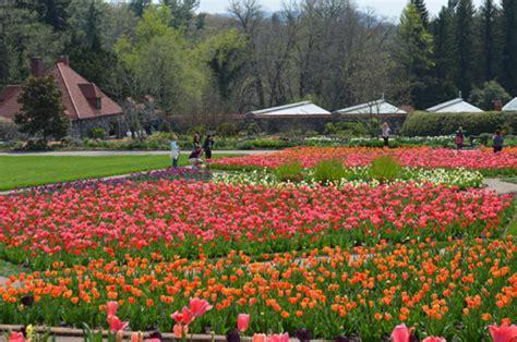 biltmore blooms asheville nc cabins