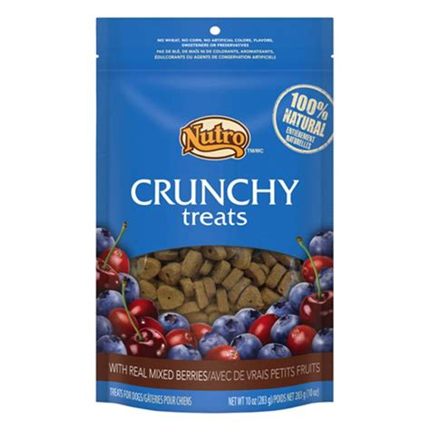 raspberries for dogs order nutro crunchy treats w real mixed berries for dogs