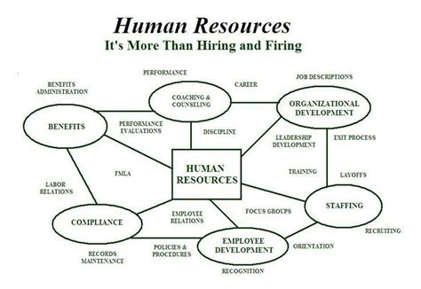 pin by susan levy on human resources