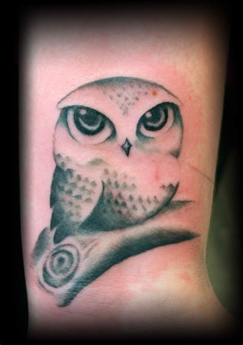 cute owl tattoo 17 best images about tattoos on