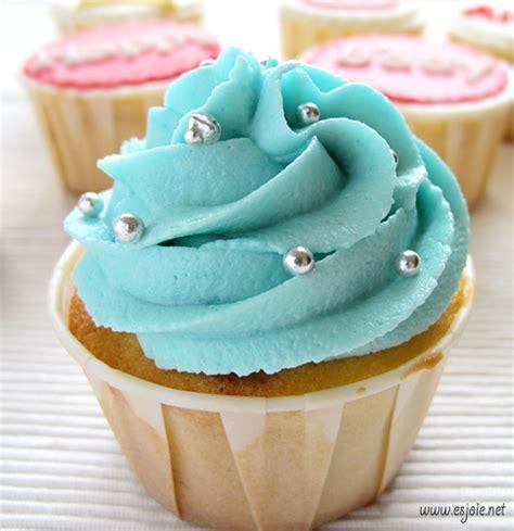 Happy Birthday Cupcakes!   e's joie