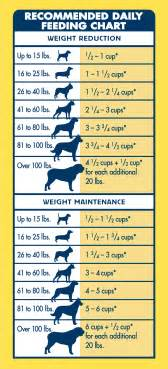 life protection formula 174 dry dog food healthy weight chicken amp brown rice recipe blue buffalo