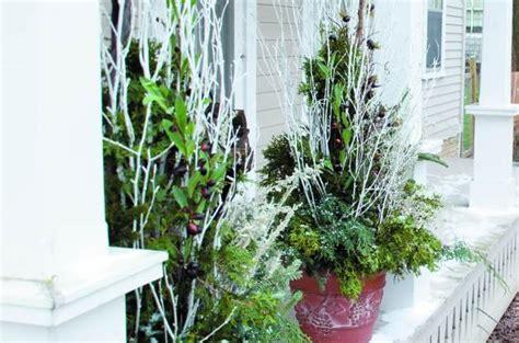 Winter Container Garden - easy winter container garden arrangement birds and blooms