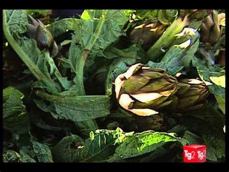 alimentazione tiroide tiroide alimentazione