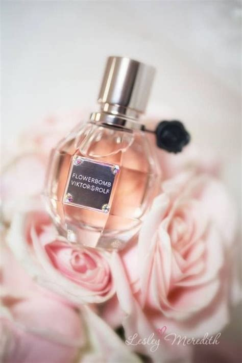 Parfum Casablanca Pink 33 best cologne images on cologne jo malone