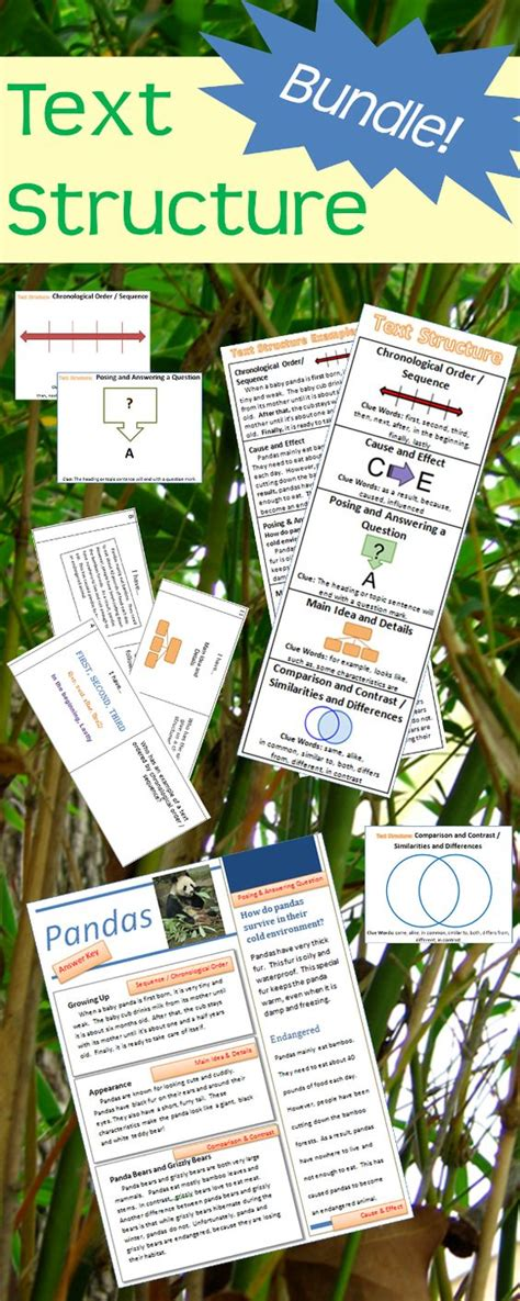 mention four major pattern of curriculum organization text structure bundle task cards passages bookmarks