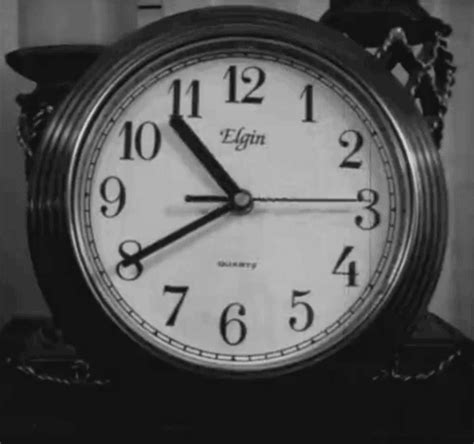 ticking clock for puppy tick tock 3 reasons why my maternal clock is ticking