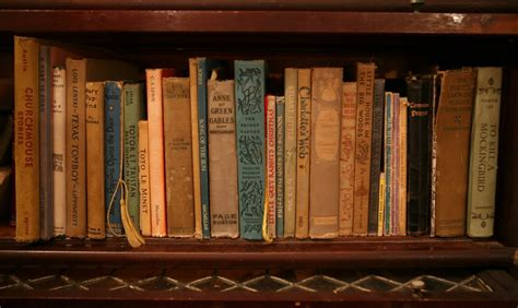 bookshelves and what they say about you killadjectives