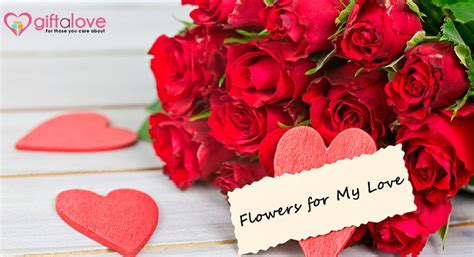Official S Day Flower Valentine S Day Giftalove Official Blogs