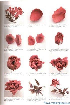 Diy Miniatur Papercraft Serangga Kumbang Jepang articles tutorials and book on