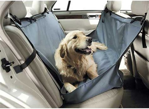 hammock for car fantastic hammock for car nealasher chair the advantages of hammock for car