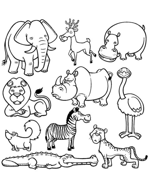 wild animals coloring pages preschool picture of african animals to color to print or download