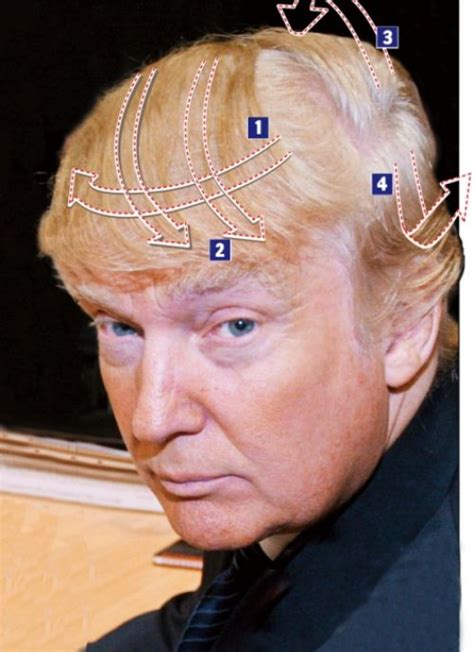 haircuts explained seriously omg wtf 187 donald trump s hair explained