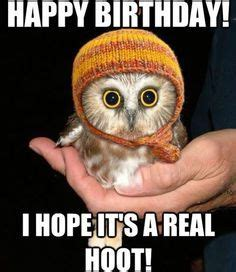 1000 ideas about happy birthday meme on pinterest funny