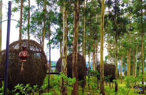 dusun bambu   Picture of Dusun Bambu, Bandung   TripAdvisor