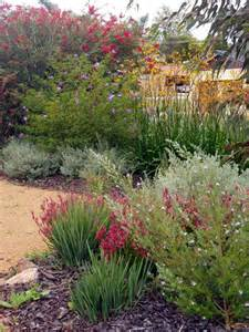 25 best ideas about native gardens on pinterest