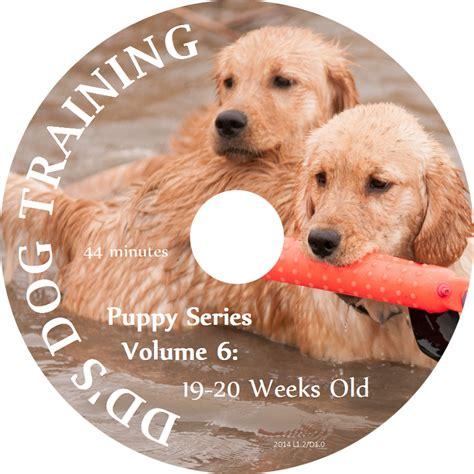 puppy series puppy series volume 6 19 20 weeks dvd dd s