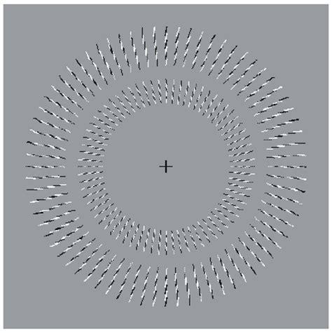ilusiones opticas que parecen moverse asombrosos efectos opticos taringa