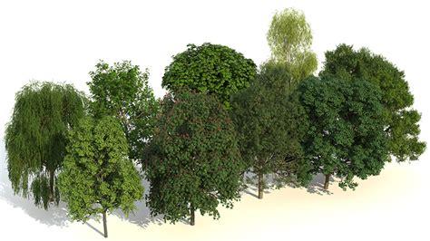 render plant laubwerk plant kit 2 rodenburg verlag akademie