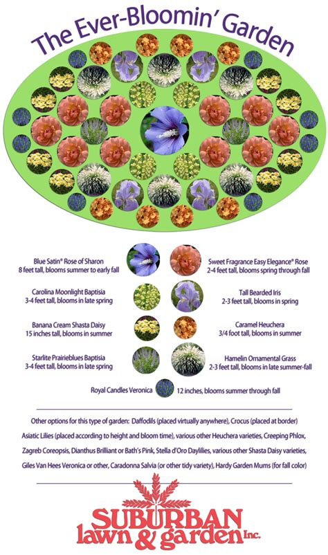 perennial garden plans zone 3 flower garden ideas zone 5 pdf