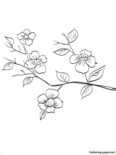 coloring page of a tree branch flowering fruit tree branch coloring page coloring pages