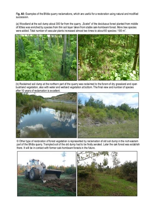 exle of habitat wildlife return at the quarry quot břidla possibilities of hab