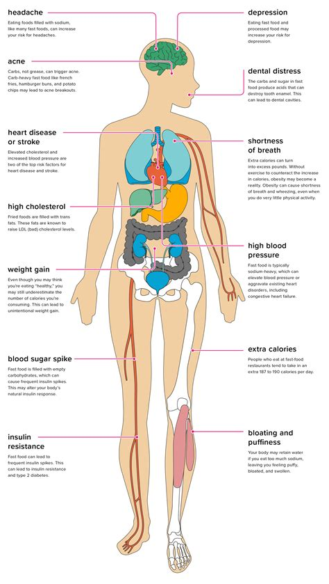 healthy fats effects 13 effects of fast food on the