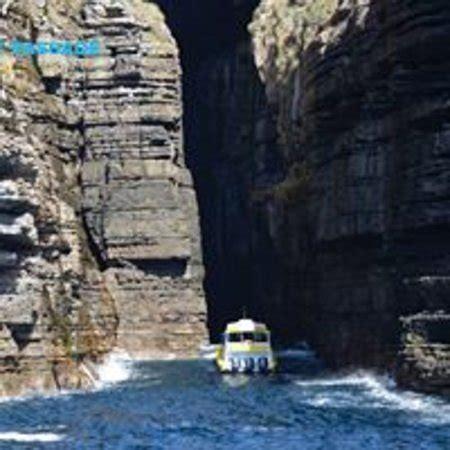 boat tour jervis bay jervis bay wild cruises huskisson australia top tips