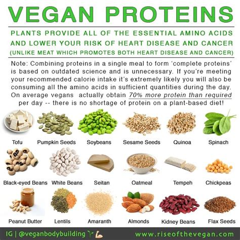 r proteins plants vegan proteins plants provide all of the essential amino