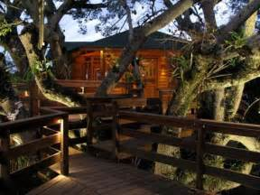 10 best treehouse plans and designs coolest tree houses